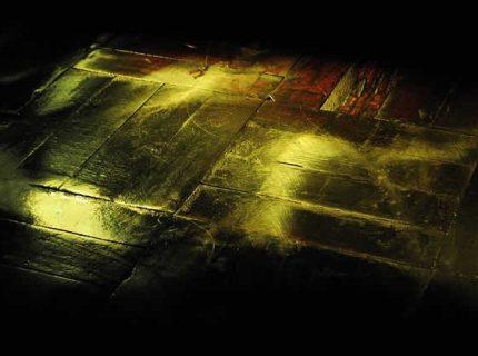polish floor